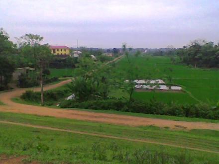 Cẩm Khê District Image