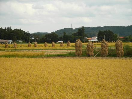 Wakayanagi, Miyagi Image