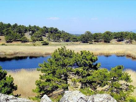 Bozkurt, Denizli Image