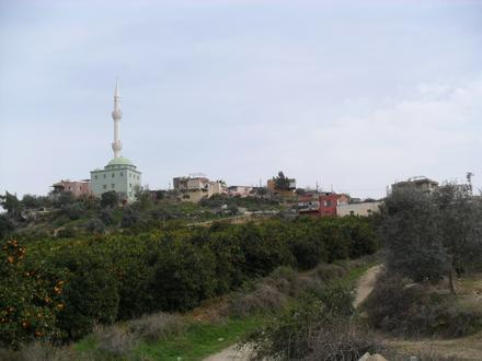 Hebilli Image