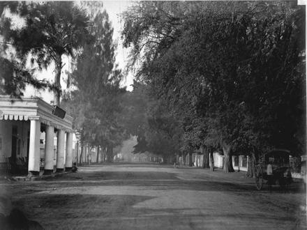 Kota Pasuruan Image