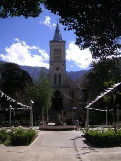 Pisco Elqui Image
