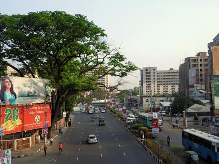 Shahbag Image