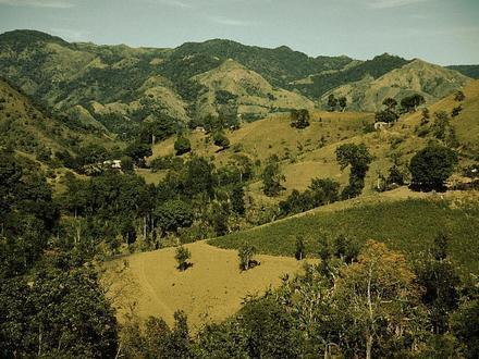 Corozal (Puerto Rico) Imagen