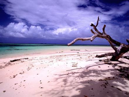 Laura, Marshall Islands Image