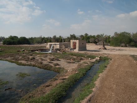 الريان (قطر) Image