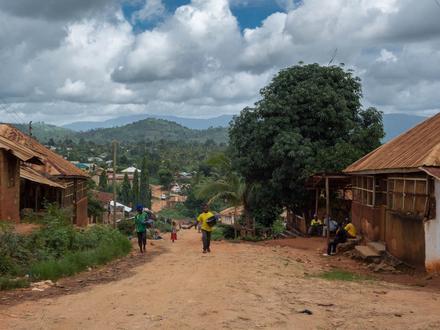Wilaya ya Muheza Image