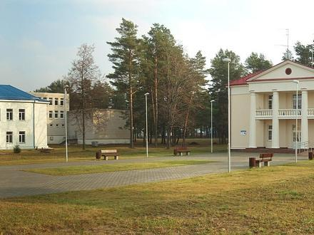 Baltoji Vokė Image