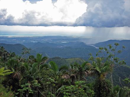Jayuya, Puerto Rico Image