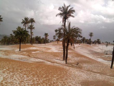 بشار (الجزائر) صورة