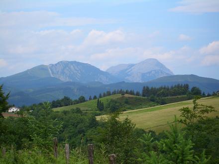 Leintz-Gatzaga