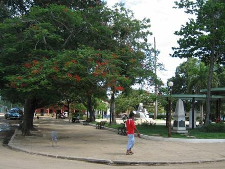 Melena del Sur Imagen