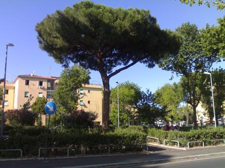 Acilia-Castel Fusano-Ostia Antica Изображение