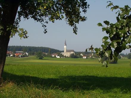 Haigermoos Image