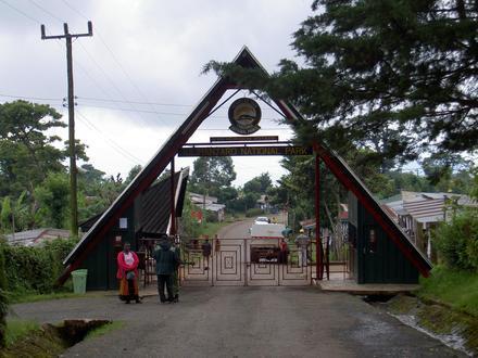 Marangu Image