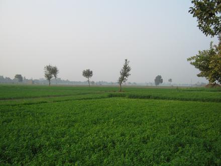 Sonipat Image