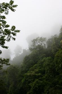 Santiago Comaltepec Image