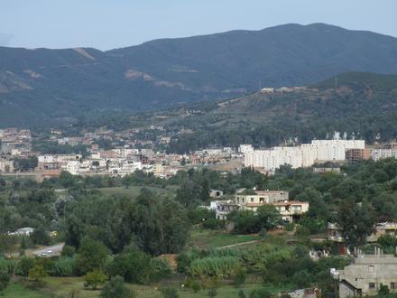 تمالوس Image