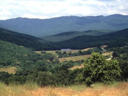 Panagyurishte Municipality Image