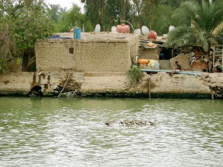 Abu Al-Khaseeb Image