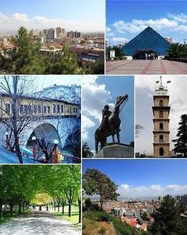 Bursa Image
