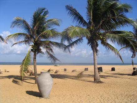 Negombo Image