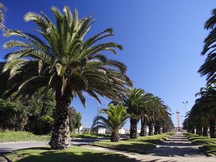La Serena (Chile) Imagen