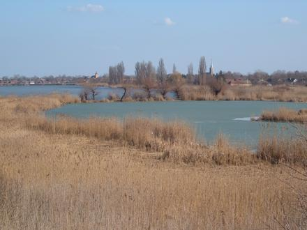 Bačko Gradište Image