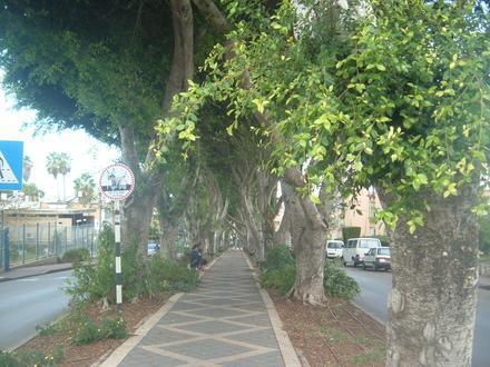 Kiryat Ata Image